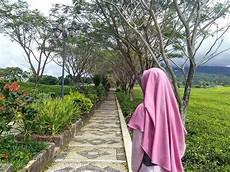 Foto Wanita Muslimah Cantik Berhijab Dari Belakang Ilmu