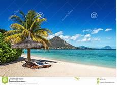 Gratis Malvorlagen Regenschirm Island Ruhesessel Und Regenschirm Auf Tropischem Strand In