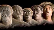 die evolution des menschen genetik die evolution ist am ende welt