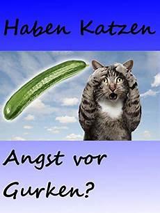 Clip Haben Katzen Angst Vor Gurken Catman