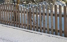 Gartenzaun Billig Kaufen - bester obi gartenzaun 2020 test vergleich und wichtige infos