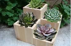 vasi in legno fai da te vasi in legno per piante grasse fai da te pagina 2 di 2