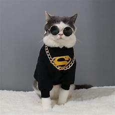 Tyrant Glasses Original Pet Cat Glasses Teddy Mini