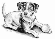malvorlage hund russel kleurplaat russel dibujo para colorear
