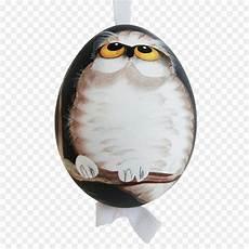 Burung Hantu Paruh Gambar Png
