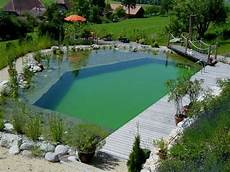 Schwimmteich Oder Pool - 68 best swimming pools images on