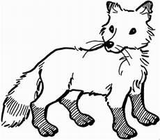 Malvorlagen Tiere Fuchs Fuchs Straffiert Ausmalbild Malvorlage Tiere