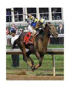 Preakness Chart 2014 Kentucky Derby News Times Topics The New York Times