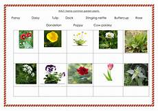 science plants ks1 worksheets 13580 ks1 science plants planning x 6weeks all resources by sellex01 teaching resources tes