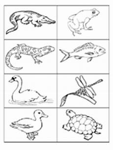 free coloring pages pond animals 17411 picture cards for themes prekinders