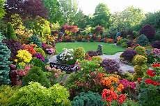 foto di giardini fioriti il giardino sempre fiorito blueplanetheart it