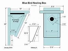 bluebird bird house plans the best 10 blue bird houses for beloved pets project