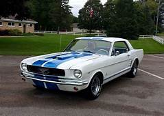 17 Best Images About Mustangs / Shelbys On Pinterest