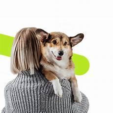 avis conseils assurance animaux ivry sur seine