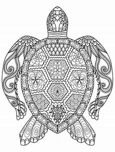 printable coloring pages for adults animals 17282 20 gorgeous free printable coloring pages turtle coloring pages mandala coloring pages