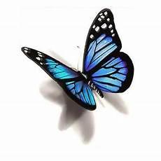 Schmetterling 3d - blue 3d butterfly design butterfly 3d butterfly