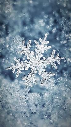 snowflake iphone wallpaper wallpaper iphone winter beautiful snowflakes winter