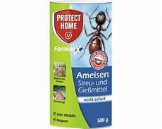 Ameisenmittel Protect Home Blattanex 500 G Bei Hornbach Kaufen
