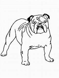 malvorlagen hunde gratis englische bulldoge ausmalbild malvorlage hunde