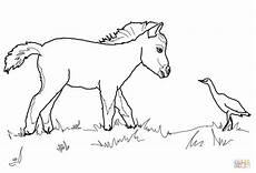 coloring pages of horses and foals coloring home