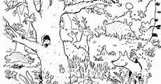 Ausmalbilder Tiere Im Wald Natur Wald Tiere Guckes Basteln Wald