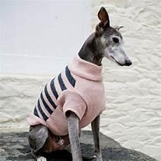 hundepullover selber stricken oder aus einem alten pulli