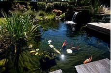 bassin de jardin avec cascade 62005 bassin et fontaine rebeyrol am 233 nagement et entretien