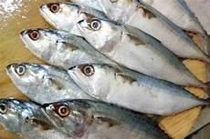 Menilik Ikan Kembung Si Ikan Pelagis Kecil