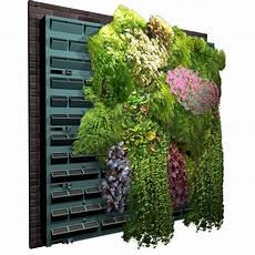 mur végétal stabilisé murs vegetaux exterieur mur vgtal mur vgtal artificiel