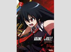 Akame Ga Kill,Akame Ga Kill – Streaming Free Online – Watch on Crunchyroll,Akame ga kill season 2 characters|2021-01-04