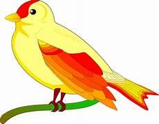 Gambar Burung Kartun Raja Kicau