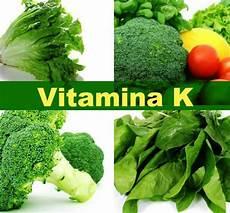 alimenti contengono la vitamina d quali sono quali sono i benefici della vitamina k 7 passi