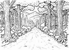 Ausmalbilder Tiere Im Wald Ausmalbilder Wald Zum Ausdrucken