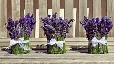 Dekorieren Mit Lavendel - tischdeko lavendel suche tischdeko lavendel