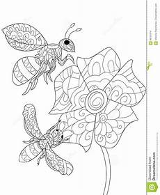 bees on a flower coloring book vector for adults stock