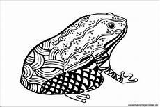 Frosch Ausmalbild Erwachsene Frosch Ausmalbilder Zum Ausdrucken
