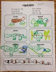 little miss goes to kindergarten reptiles hibians