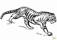 Ausmalbilder Siamkatze Tiger Coloring Page Free Printable Coloring Pages