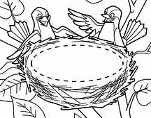 Bird Couple And Their New Nest Coloring Pages  Best