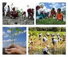 Interaksi Manusia Dengan Lingkungan Alam Sosial Budaya