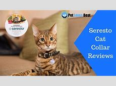seresto collar causing health problems