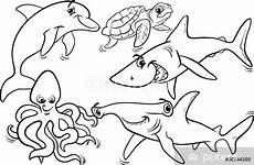 Malvorlagen Unterwasserwelt Iphone Malvorlagen Unterwasserwelt Ausmalbilder Fur Euch
