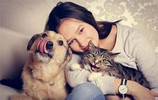 Welches Haustier Passt Zu Mir