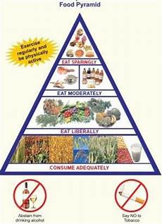 pyramid or plate carbs or veggies what really is the ideal diet