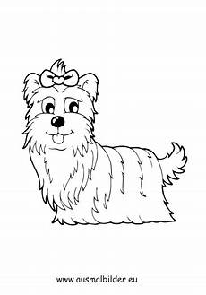 Ausmalbilder Hunde Pudel Ausmalbild Terrier Dame Zum Kostenlosen Ausdrucken Und
