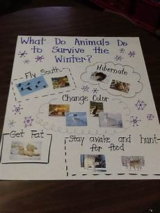 animals in winter worksheets for kindergarten 14199 image only animal survival in winter anchor chart winter kindergarten winter preschool
