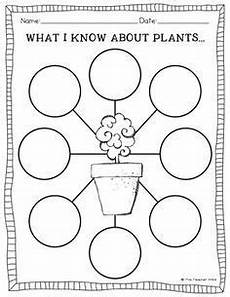 science worksheets for grade 1 types of plants 13715 worksheet on types of plants for grade 2 search plant activities plant science