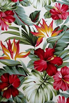 Tropical Flower Wallpaper Hd by Fabric Hibiscus Floral On Tropical By