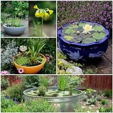 Mini Gartenteich Bauen Kleine Oasen Im Garten Oder Auf