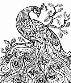 Malvorlagen Muster Tiere Zentangle Vorlagen Gratis Ausdrucken Zum Ausmalen